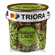 Лак акриловый глянцевый Triora 2,5 л для декоративной отделки деревянных и минеральных поверхностей фото