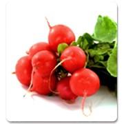 Семена редиса Gloriette F1 - Глориет F1 фото