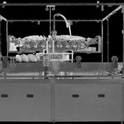 Ополаскивающая машина ЛПМ1 фото
