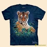 Футболка детская Тигр в траве фото