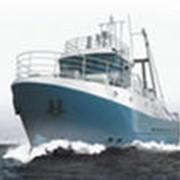 Малое рыболовное судно фото