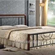 Кровать Кэлли 160 х 200 каштан фото