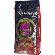 Чайный напиток MASTER TEAM karkade Суданская роза, 250г фото
