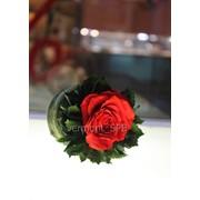 Неувядающая роза в бидончике фото