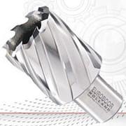 HCS.850 Кольцевая фреза из HSS, длиной 30 мм и диаметром 85 мм. фото