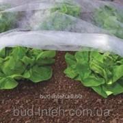 Агроволокно Premium-agro 23 г/м2 3,2х50м фото