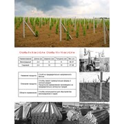Опоры для винограда ЖБИ, оптовая продажа, Крым, в Украине, Симферополь фото