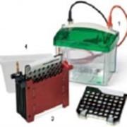 Система блоттинга Mini Trans-Blot Cell фото