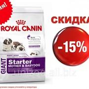 Сухой корм для щенков Royal Canin Giant Starter 4 кг фото