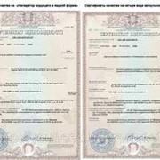 Получение гигиенического сертификата. фото