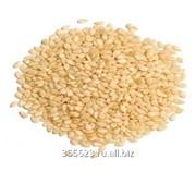 Семя кунжутное, белое 1 кг фото