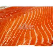 Рыбное филе - широкий выбор фото