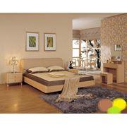 Спальня Кленовая коллекция фото