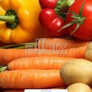 Хранение овощей в холодильниках фото