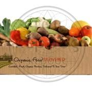 Производство ящиков и тары для фруктов, ягод и овощей фото