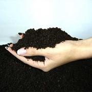 Органическое удобрение ЭкоФарм фото