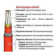 Инструментальный кабель RE-2X(St)HSWAH..Cl многожильный фото