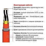 Инструментальный кабель RE-2X(St)НSWAH..Cl многопарный фото
