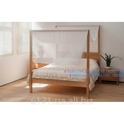 Кровать Оазис фото
