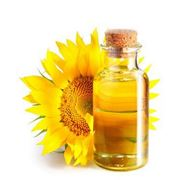 Обрушивание семян подсолнечникапроизводство масла в Молдове и на Экспорт фото