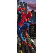 Фотообои Komar Spiderman NYC фото