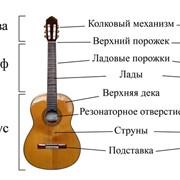 Гитары фото
