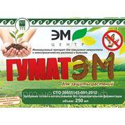 """Удобрение минеральное """"ГУМАТЭМ"""" для защиты растений, 250 мл фото"""