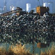 Экологические исследования фото