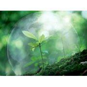 Финансирование окружающей среды фото