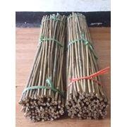 Полнотелые бамбуковые тычки. фото