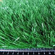 Рулонный икусственный газон фото
