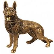 Скульптура Немецкая овчарка / Собака 54х52х23см. МК1082 фото