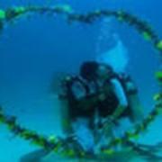 Подводные видео -, фотосъемки свадьбы фото