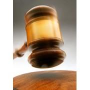 Услуги юрисконсультов в области судебных процессов фото