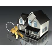 Консультации по вопросам продажи-покупки-аренды объектов фото