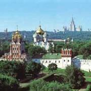 Экскурсия в Новодевичий монастырь фото