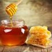 Мед мед фото