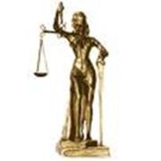 Взыскание долгов в хозяйственном суде фото