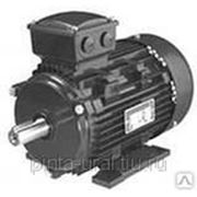 Электродвигатель АИММ 100S4 (3/1500) 3081 фото