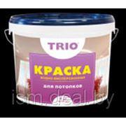 Краска водно-дисперсионная для потолков ВД-АК 203 фото