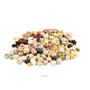 Кормовые культуры бобовые фото