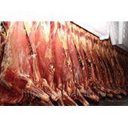 Мясо говядина охлажденное и замороженное в полутушах производство Белоруссия фото