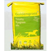 Кормовые травы для лошадей фото