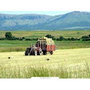 Услуги сельскохозяйственных машин фото