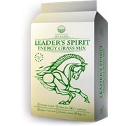 Feed LEADER'S SPIRIT Energy фото