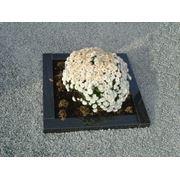 Изготовление цветника на могилу фото