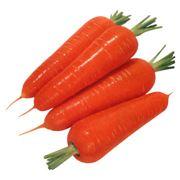 Комплексные поставки свежих овощей оптом!