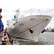 Фрахтовании судов для перевозки разных видов грузов фото
