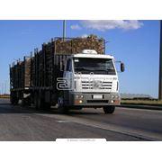 Перевозки полных грузов сухопутным транспортом фото