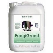 Грунтовка водная микробиоцидная FungiGrund 10 л фото